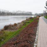 Zagospodarowany brzeg Jeziora Długiego od strony zachodniej